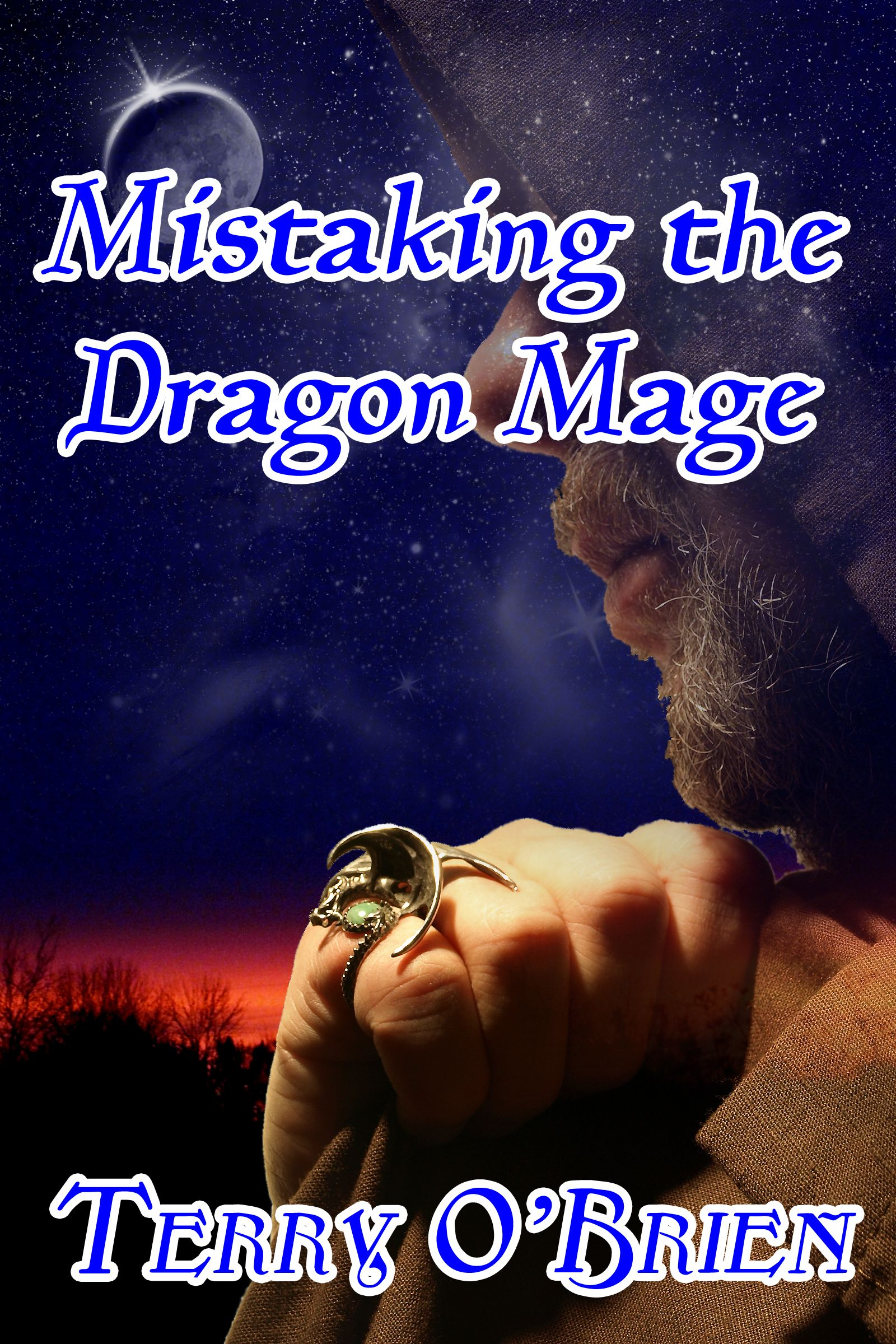 Mistaking the Dragon Mage